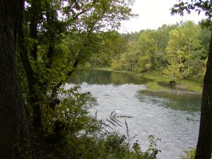 Cow Shoals on the Little Red River